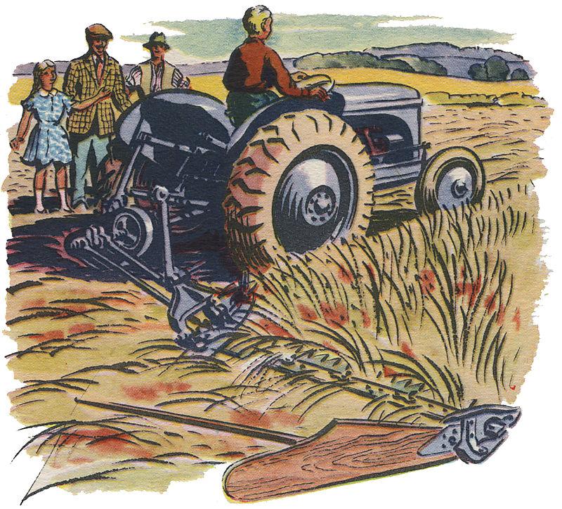 Cartoon 1 jpg