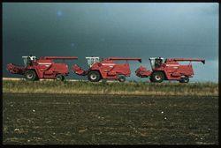 Massey Ferguson combines travelling, Montana 1980