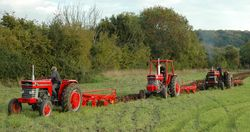 7.1  Three MF tractors and ploughs working together