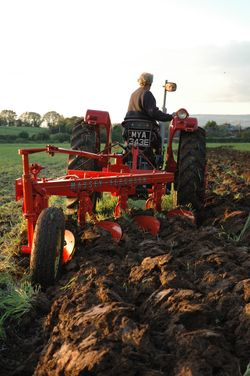 8 MF 175 with MF 86 4-furrow semi-mounted plough