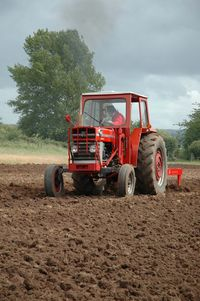 MF 185 with MF 24 chisel plough