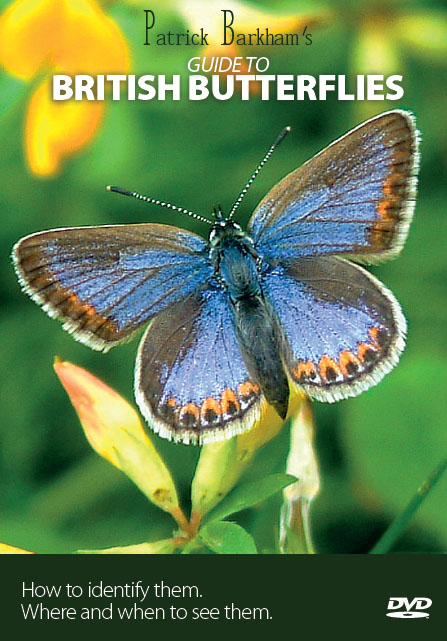 Patrick Barkham's Guide to British Butterflies cover