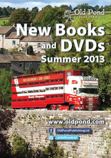 Summer cat 2013 cover