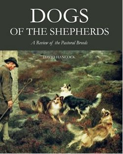 Dogs_of_the_shepherd