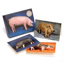 Xl-beautiful-pigs-notecards-1-pigs-notecards-packshot-976x976