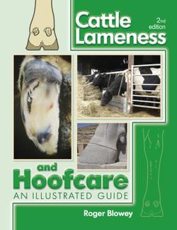 Cattle_lameness